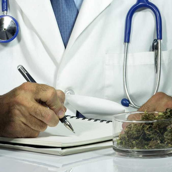Medical Marijuana Doctors in Florida